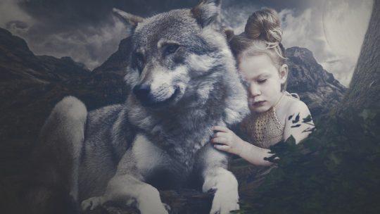 """Der Wolf – Mehrheit ist """"Pro Canis lupus"""""""